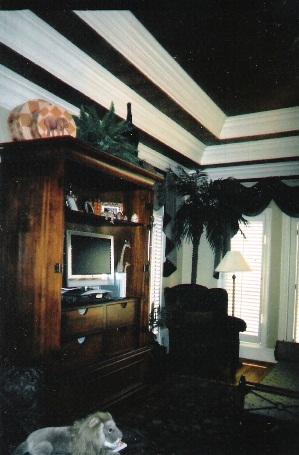 Master Bedroom w/Trey Ceiling